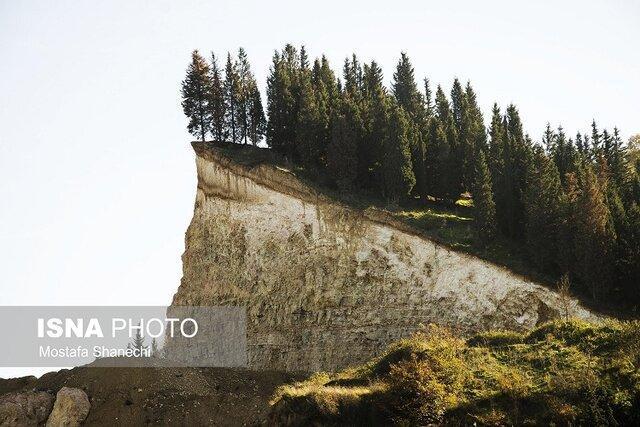 کوه های جنگلی شمال را از بیخ و بُن می بُرند