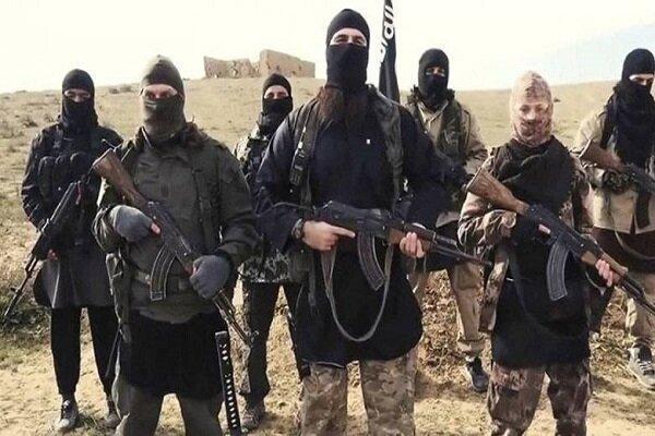 بیعت شاخه داعش در سومالی با جانشین البغدادی