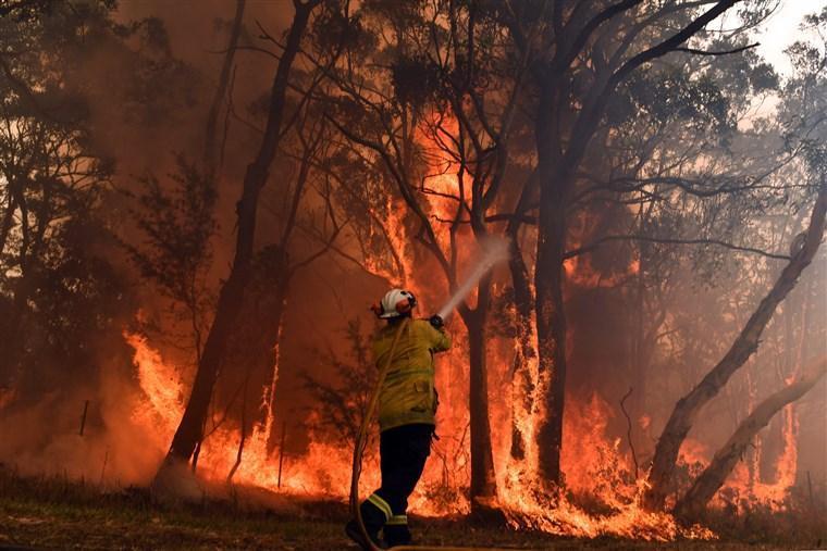 ناکامی استرالیا از مهار آتش سوزی جنگلی؛ منطقه ای به وسعت ژاپن در آتش سوخت