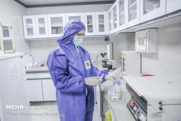 ورود پژوهشگاه رویان به فرایند تشخیص کرونا