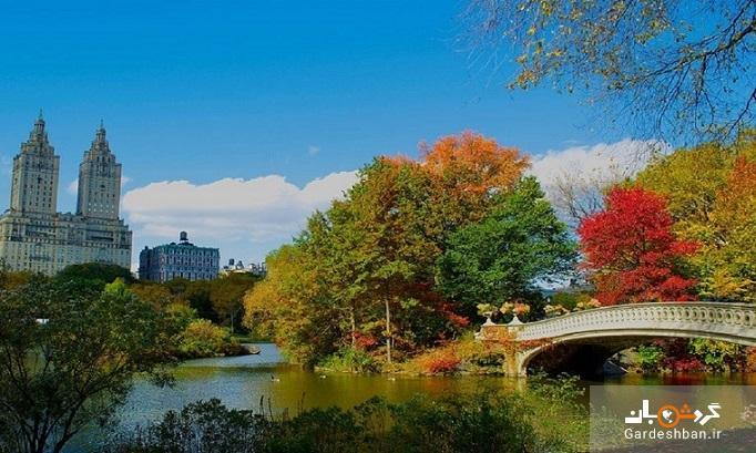 فصل پاییز به روایت برگ های سرخ و زردی که چشم ها را مسحور می نماید