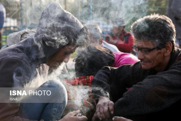 کنترل بیماریهای عفونی معتادان در پاتوقها، وجود 69 سرپناه ویژه آنها