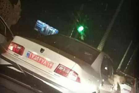 مدیر سگ گردان با خودروی دولتی برکنار شد